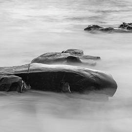 Scott Campbell - Many Moments Flow Black and White