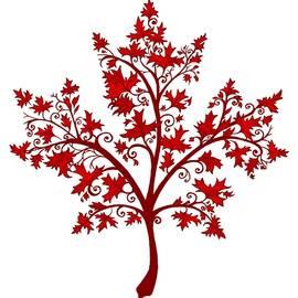 Katherine Nutt - Maple Leaf Maple Tree