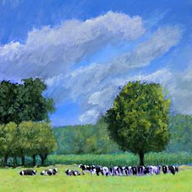 David Zimmerman - Mapleview Farms