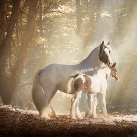 Jamie Mammano - Mare and Foal II