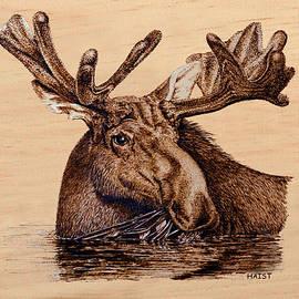 Ron Haist - Marsh Moose