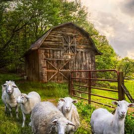 Debra and Dave Vanderlaan - Mary Had a Little Lamb