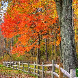 Michael Mazaika - Maryland Country Roads - Autumn Colorfest No. 11 - Eylers Valley Catoctin Mountains Frederick County