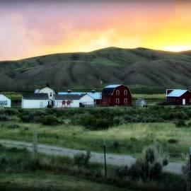 Krista Carofano - Matador Ranch