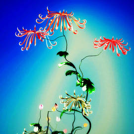 GuoJun Pan - Math Chrysanthemum 1