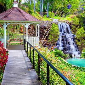 Michael Rucker - Maui Botanical Garden