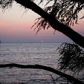 Jennifer Ancker - Maui Sunset