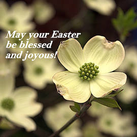 Kathy Barney - May Your Easter Be Blessed