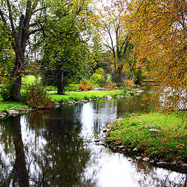 Debbie Oppermann - Meandering Creek In Autumn