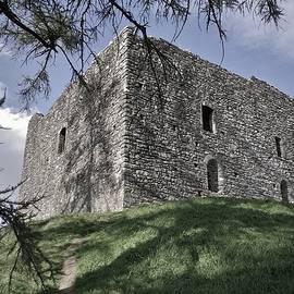 Richard Brookes - Medieval Lydford Castle Devon UK