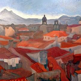 Alexander Sydney - Mediterranean Roofs