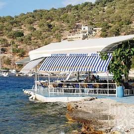 David Fowler - Meganissi beach taverna