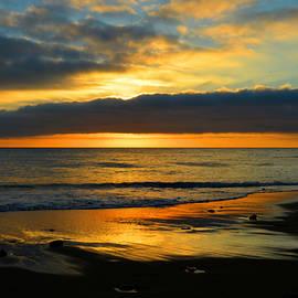 Dianne Cowen - Mellow Ocean Sunrise