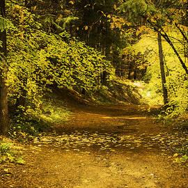 Diane Schuster - Memories of Autumn