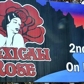 Karen Majkrzak - Mexicali Rose Sign