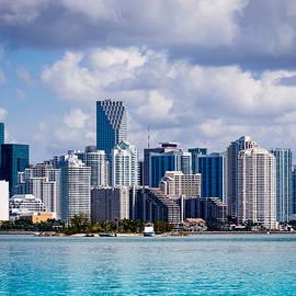 Robin Zygelman - Miami Blues