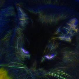 Aliceann Carlton - Midnight Glow