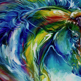 Midnight Run Equine