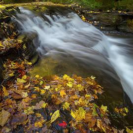 Midwest Fall - Jeff Klingler