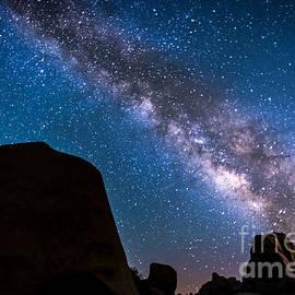 Art K - Milky Way in Joshua Tree
