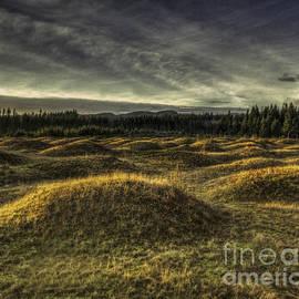 Jean OKeeffe Macro Abundance Art - Mima Mounds Sunset