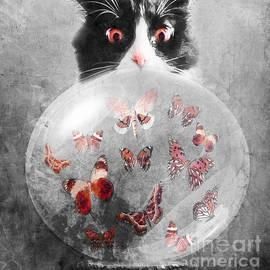 Mine - Photodream Art