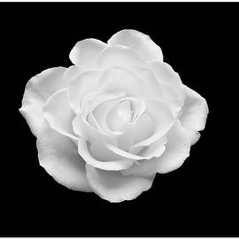 Johanna Hurmerinta - Minimalistic White