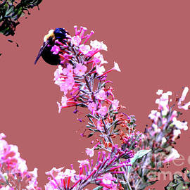 Gardening Perfection - Mining My BeesNess