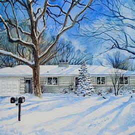 Hanne Lore Koehler - Minneapolis MN Home Portrait