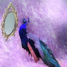 Linda Troski - Mirror, Mirror on the Wall