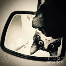 Sarah Labadie - Mirror Mirror