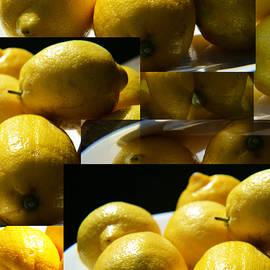 Tina M Wenger - Mirrored Lemons