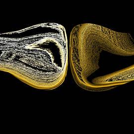 Abstract Alien Artist Stephen Killeen - Missing My Wings