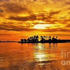 Jasna Gopic - Mission Beach Golden Sunset