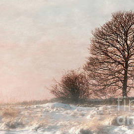 Linsey Williams - Mist and Snow At Sunset