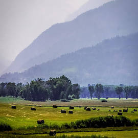 Janice Rae Pariza - Misty Harvest Mountain Morning