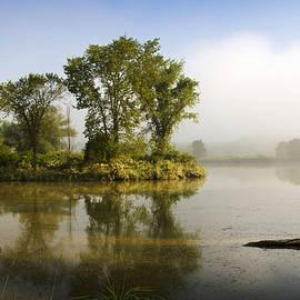 Christina Rollo - Misty Morning Island Trees