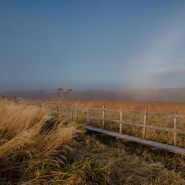 Leif Sohlman - Misty morning October