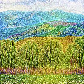 Joel Bruce Wallach - Misty Mountain Meadow