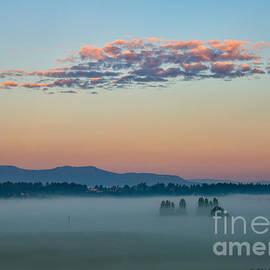 Wendi Donaldson - Misty Sunrise