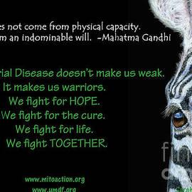 Mito Awareness Zebra - Sarah Batalka