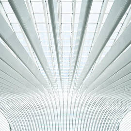 Modern roof in futuristic interior with concrete arches in perspective - telesniuk