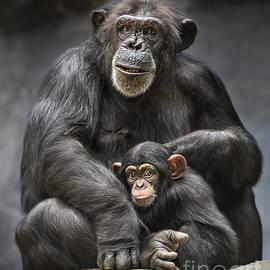 Jamie Pham - Mom and Baby