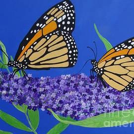 Karen J Jones - Monarch Butterflies on Buddleia Flower