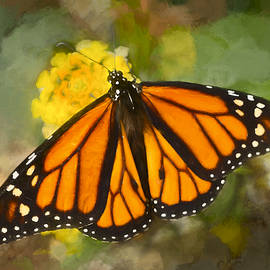 F Leblanc - Monarch Butterfly - Painting