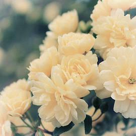 Iryna Burkova - Monarchy Of Roses
