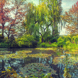 John Rivera - Monet