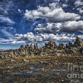 Mitch Shindelbower - Mono Lake  3
