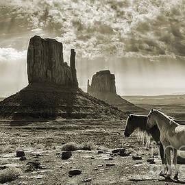 Priscilla Burgers - Monument Valley Horses - Sepia