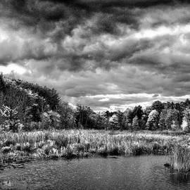Lilia D - Moody black and white landscape